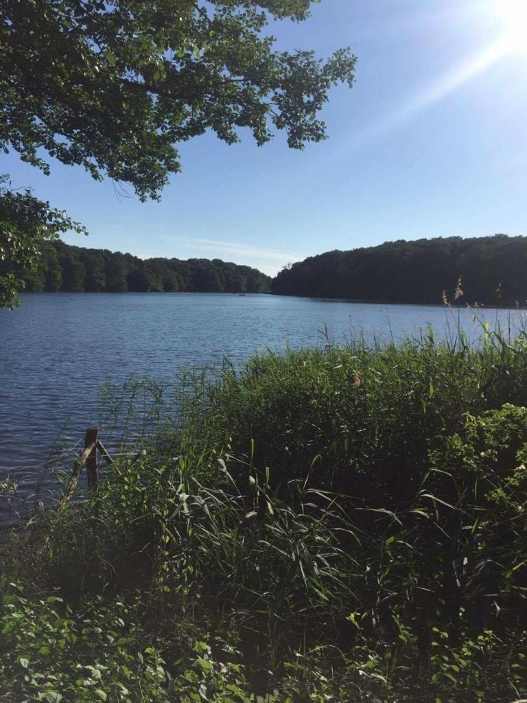 One month in Berlin - lake schlachtensee